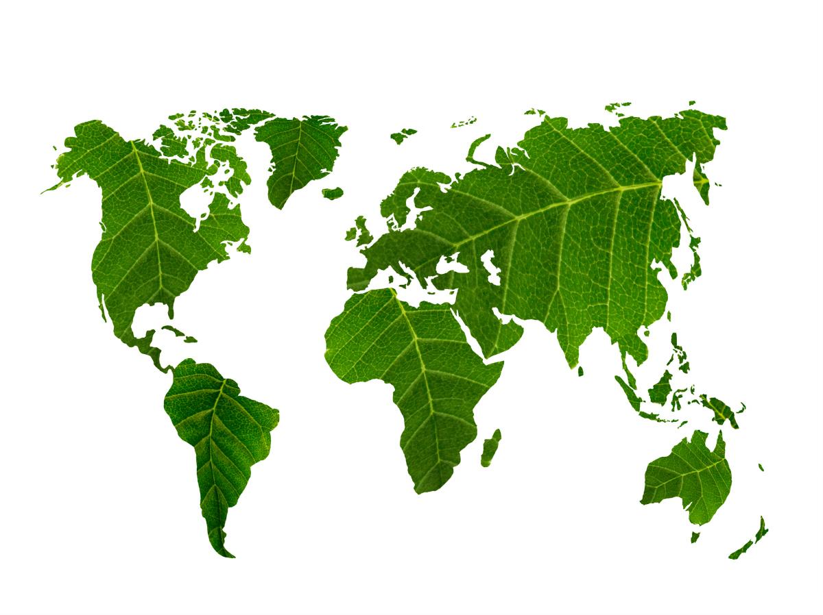 Conflits environnementaux – Deux études de cas par les étudiants de l'UNIGE