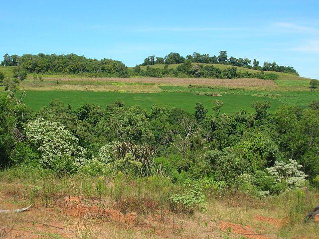 2007 <br> Accaparement de terres agricoles